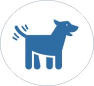 AlphaPet Mitarbeiter Benefits - Hunde erwünscht